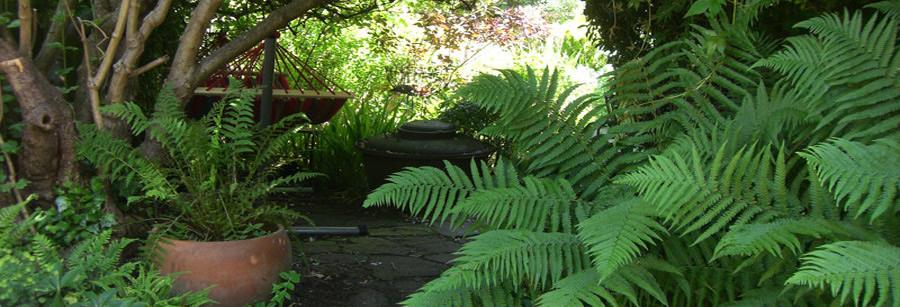 Landscape Gardening High Wycombe : Oxford landscape gardening gardeners pond